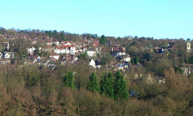 Councillor slams Sheffield Council for Local Plan delay